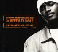 Cam'ron - What Means The World To You