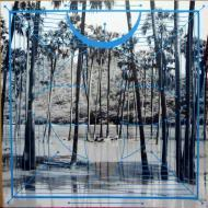 Four Tet  - Lion / Peace For Earth