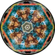 Gaslamp Killer x Serato - Gaslamp Killer Picture Disc Control Vinyl (Break Stuff)