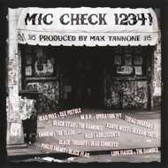 Max Tannone - Mic Check 1,2,3,4: Rap Vs. Punk