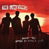 The Libertines - Anthems For Doomed Youth (Box Set)