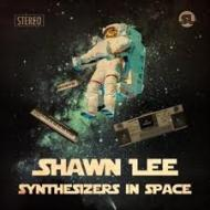 Synthesizers In Space 