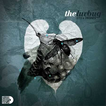 The Luv Bug